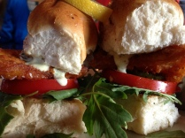 Fish Sliders Close Up