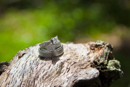 ferrier-wedding-jacksonville-photography-leann-williams (15)
