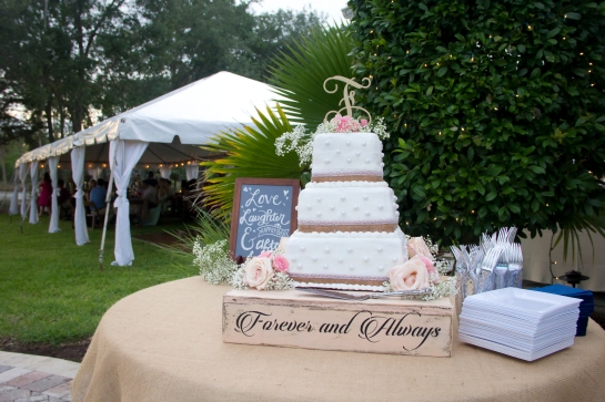 ferrier-wedding-jacksonville-photography-leann-williams (8)