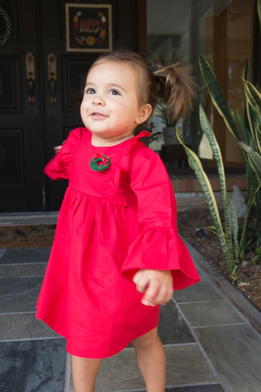 Toddler Holiday Photographer